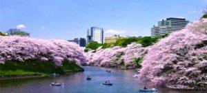 Wielkanoc wJaponii